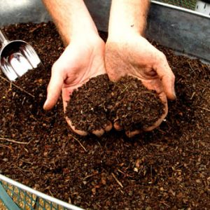 IMG Atelier Sol compost