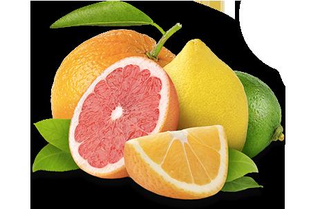 IMG Fruits groupés ©MaVraieNature